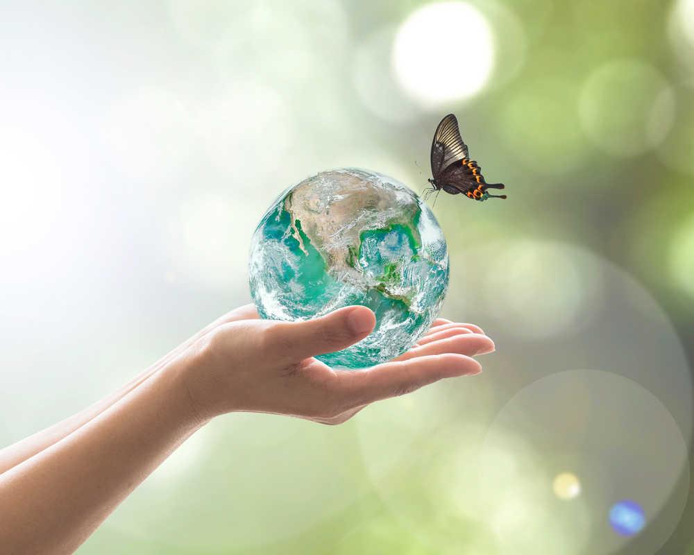 Apostando por el medioambiente